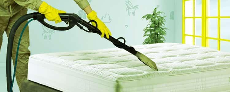 Expert Mattress Cleaning Mundijong